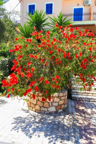 facilities nostos hotel garden